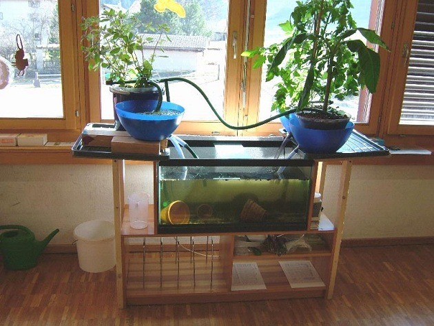 ECO-Cycle Aquaponics Kit