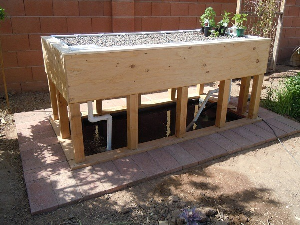 Strong Aquaponics Greenhouse Systems With Diy Grow Beds